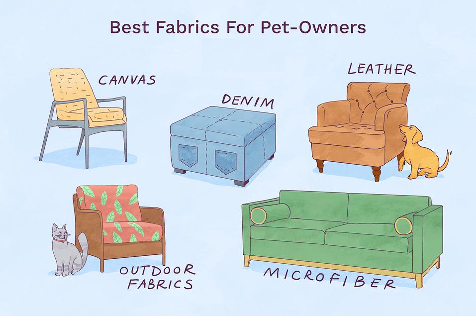 5 loại vải bọc sofa thân thiện với vật nuôi trong ngôi nhà bạn