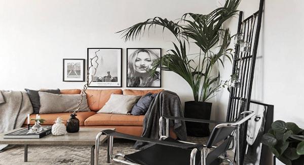 Hãy tậu ngay một chiếc sofa cực kì ấn tượng về với phòng khách bạn.