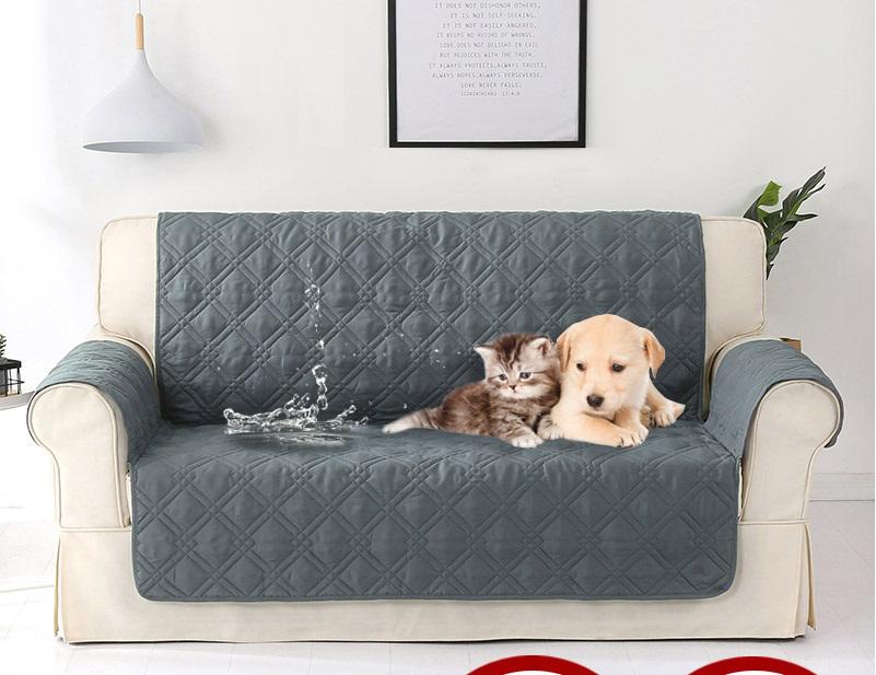 Mẹo chọn lựa sofa cho gia đình có vật nuôi chó mèo