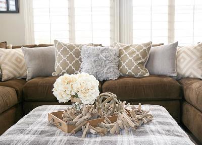 Thật dễ dàng vệ sinh sofa và quét sạch những mảng lông vật nuôi trên sofa gia đình
