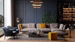 Trang trí phòng khách kết hợp sofa và những vật dụng khác