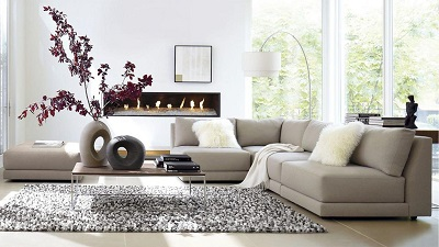 Vệ sinh lông động vật trên sofa nhà vẫn là nỗi băn khoăn của mọi hộ gia đình